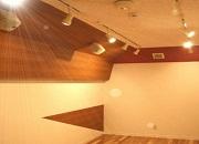 バイオリン防音室2